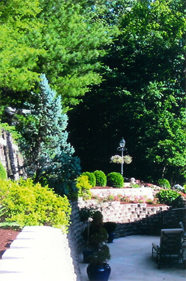 Landscaping Photo 11