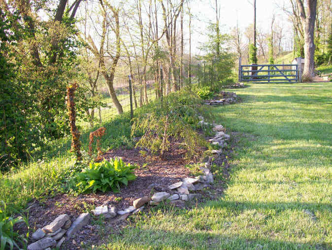 Landscaping Photo 6